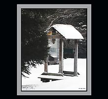Freezing Lone Shelter (Print/Wall Art) by TerriRiver