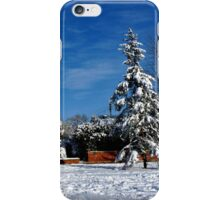 Wondrous Winter iPhone Case/Skin