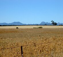 Warrumbungle Mountains view by BronwynParry186