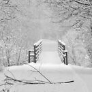 I'm Dreaming of a White Christmas by lorilee