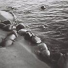 Shoreline Pebbles  by Fernlee