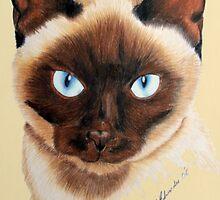 Siamese by Penny Edwardes