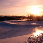 Icy Landscape by nikspix