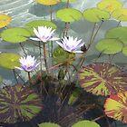 Water Lilies by Harriette Knight