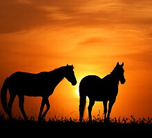 Country Sunrise by Annette Blattman
