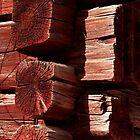 Red Timber by Maj-Britt Simble
