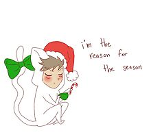 """reason for the season"" weird cats by wade-ebooks"