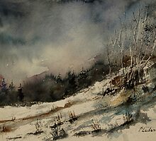Watercolor 051207 by calimero