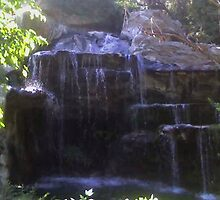 Water fall at Los Angeles Zoo by DebblesNZ