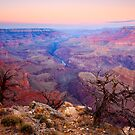 Grand Canyon Dawn by DawsonImages