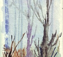 Forest shadows by Maree  Clarkson