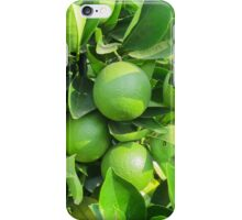 lemon on the tree iPhone Case/Skin