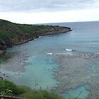 Hawaii Beach 2 by Lainey Simon