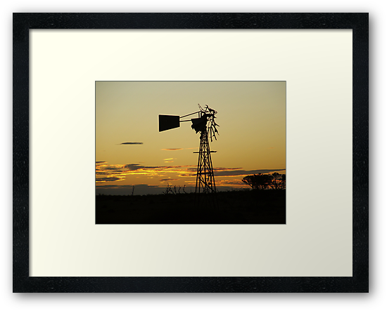windmill by bushdrover