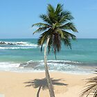South point of Sri Lanka  by Marie Tixier-Brennan