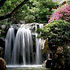 Chinese Garden - Darling Harbour, Sydney by Kim Roper