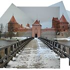 Trakai Castle Composite by georgyman