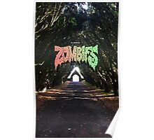 Flatbush Zombies x Maynooth Poster