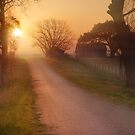 Country Morning by Andy Heatwole