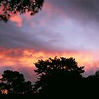 Fire In The Sky by James J. Ravenel, III