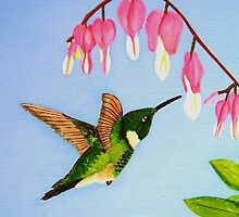 Little Hummer (acrylic) by Deborah Duvall