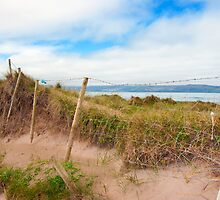 mesh wire fence at the maharees by morrbyte