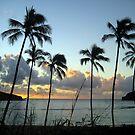 Hanauma Bay Sunrise by karolina