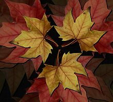 Autumn Leaves II by shane22