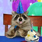 Birthday Raccoon by jkartlife