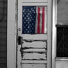 Back Alley Patriot  by snorman
