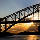Sunset over Sydney Harbour by Sheila  Smart