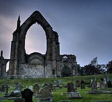bolton abbey by ladytwiglet
