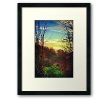 Last Colours of Autumn Framed Print
