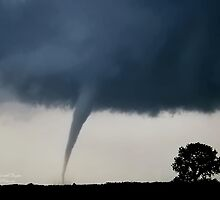 The Tornado and the Tree by Kenneth Fugate