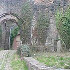 Hinterburg Castle Ruins by Ray Thacker