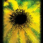 BlackEyedSusan Impressionism by manfreddy1