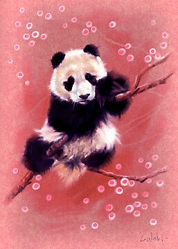 Panda by Chris Wahl