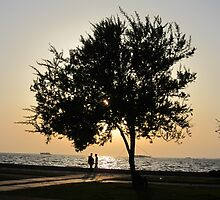 Sunset in İzmir by Ercan BAYSAL