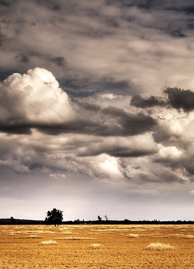 A Prairie Storm by David Haviland