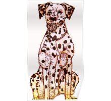 Dalmatian Poster