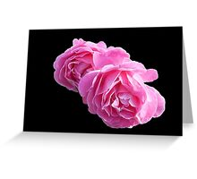 Pretty-in-Pink Roses on Black Background Greeting Card