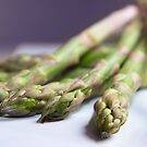 Asparagus by Lucy Hollis