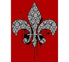 Damask Drips Photographic Print