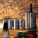 PRAIRE SKY by Madeline M  Allen