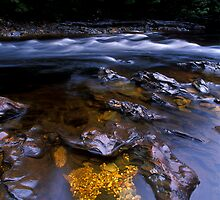 Quartzite Jewels, Franklin River by Doug Thost