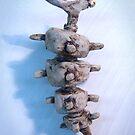 ceramic zoo 04 by damiankafe