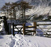 Snowy Gateway by Deborah  Bowness