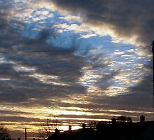 Sunrise 1  11-12-07 by Sharon Perrett
