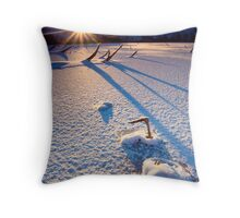 The Long Shadows of Winter Throw Pillow