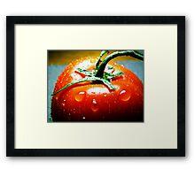 Juicy Tomato Framed Print